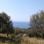 Marina di camerota in vendita terreno panoramico